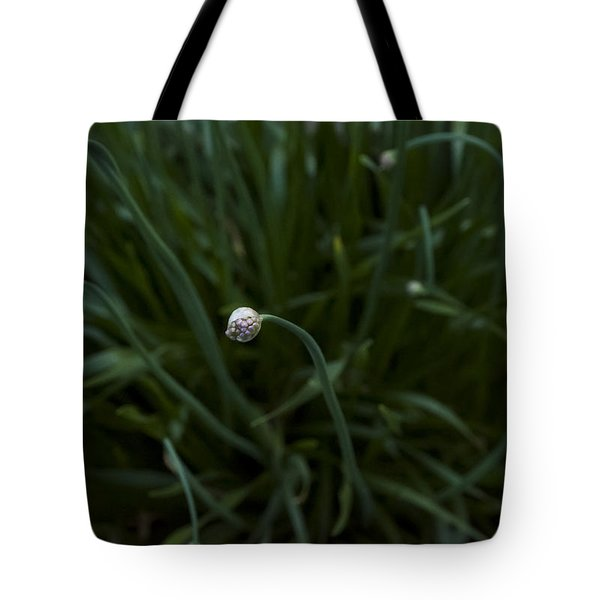 Opening Night Tote Bag by Ellery Russell