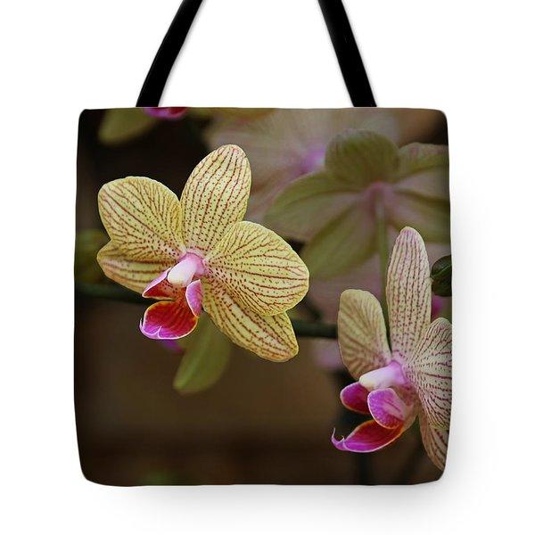 Opulent Orchids Tote Bag