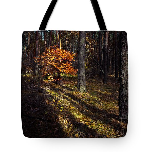 Tote Bag featuring the photograph Orange Alien by Dmytro Korol