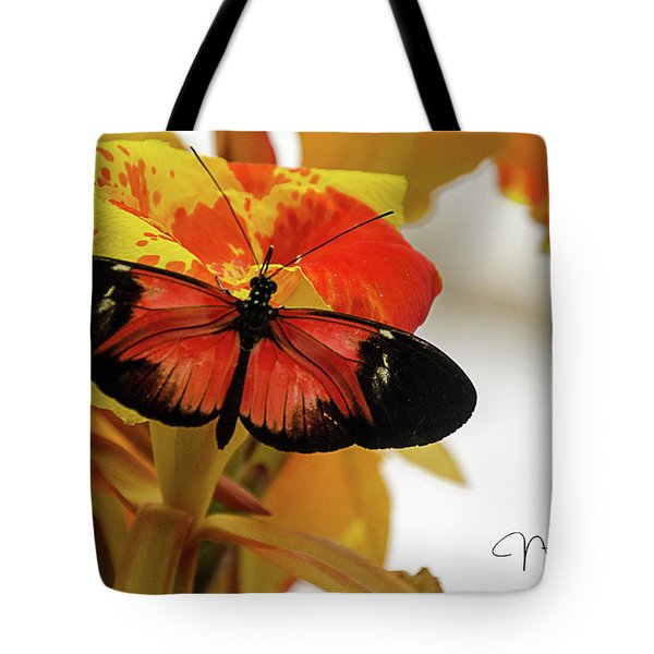 Orange And Black Butterfly Tote Bag