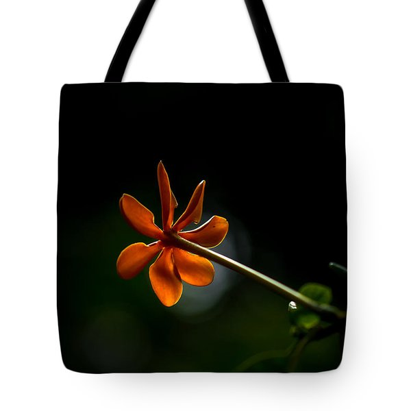 Orange And Black Tote Bag