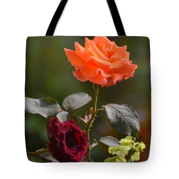 Orange And Black Rose Tote Bag