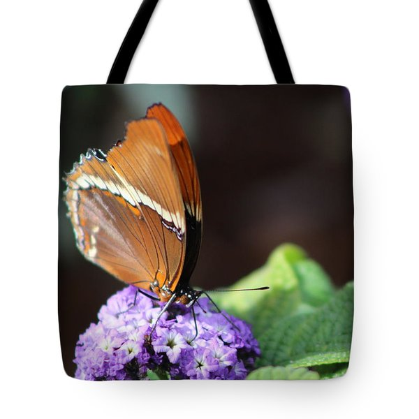 Orange And Brown Butterfly On Purple Tote Bag
