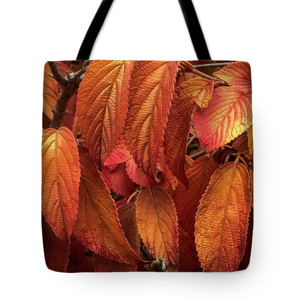 Tote Bag featuring the photograph Orange And Copper by Mark Mille