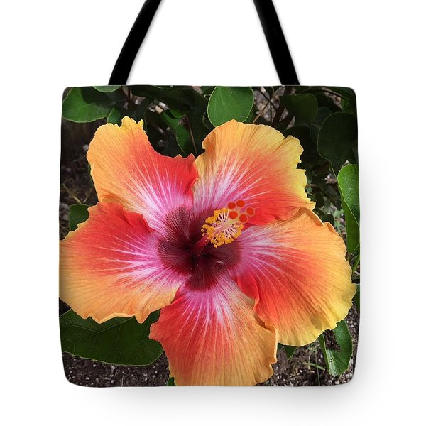 Orange And Red Beauty Tote Bag