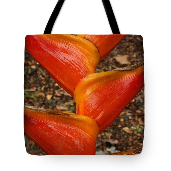 Orange And Red Haleconia Tote Bag