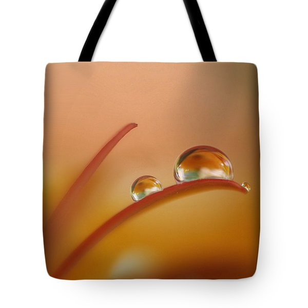 Orange Arc Trio Tote Bag
