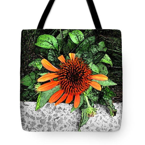 Tote Bag featuring the photograph Orange At Highline Nyc by Joan  Minchak