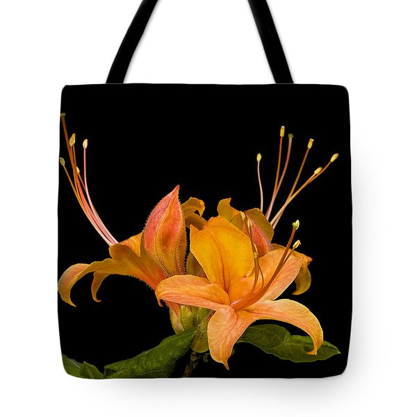 Orange Azalea Rhododendron Tote Bag