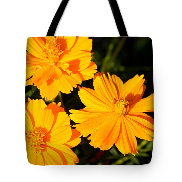 Tote Bag featuring the photograph Cosmos Trio by Sheila Brown