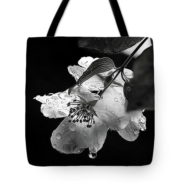 Orange Blossom Tote Bag by Elaine Hunter