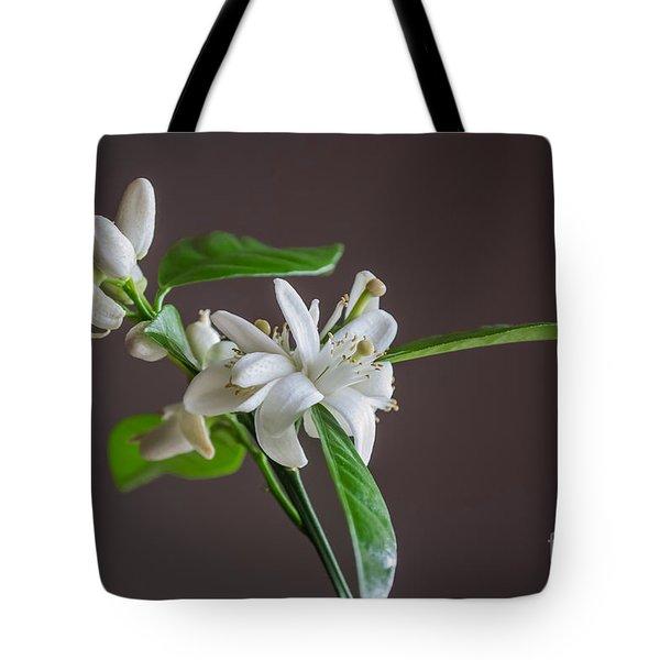 Orange Blossoms Tote Bag