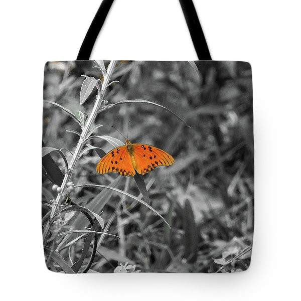 Orange Butterfly In Black And White Background Tote Bag