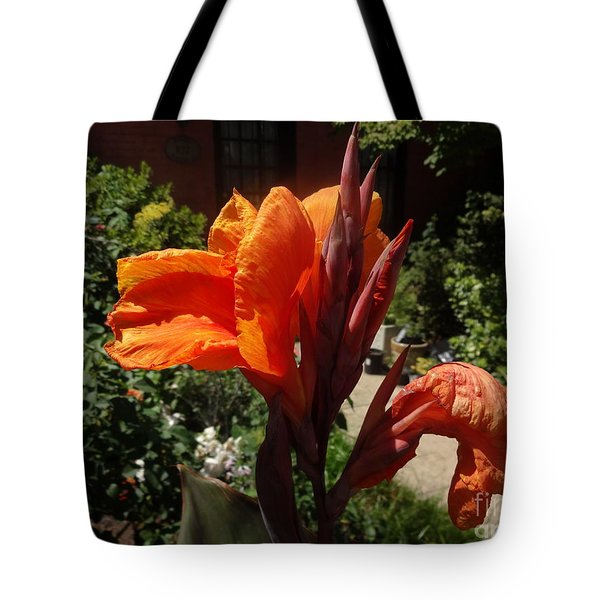 Tote Bag featuring the photograph Orange Canna Lily by Rod Ismay