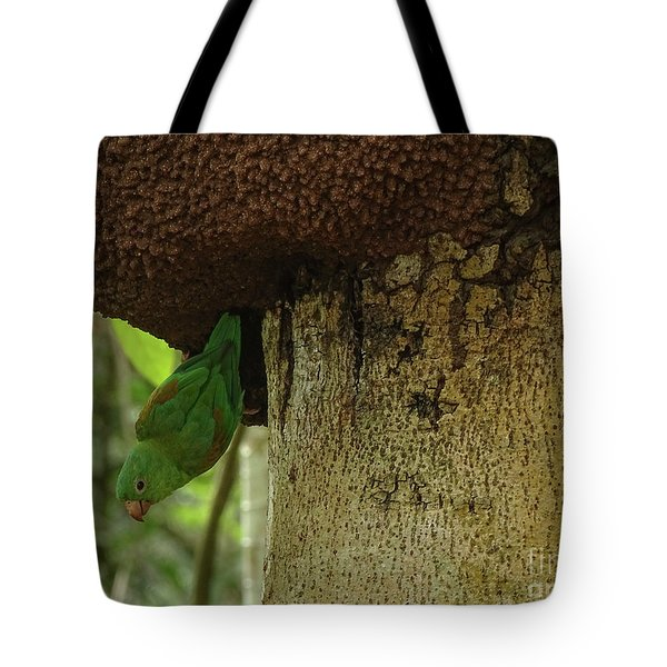 Orange -chinned Parakeet  On A Termite Mound Tote Bag