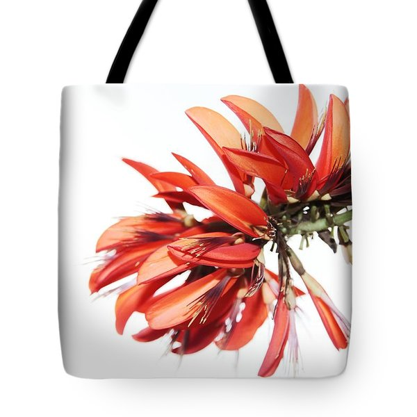 Tote Bag featuring the photograph Orange Clover I by Stephen Mitchell