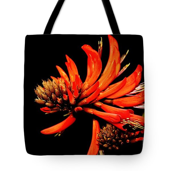 Tote Bag featuring the photograph Orange Clover II by Stephen Mitchell