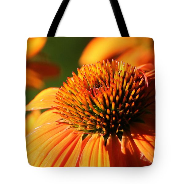 Orange Coneflower At First Light Tote Bag