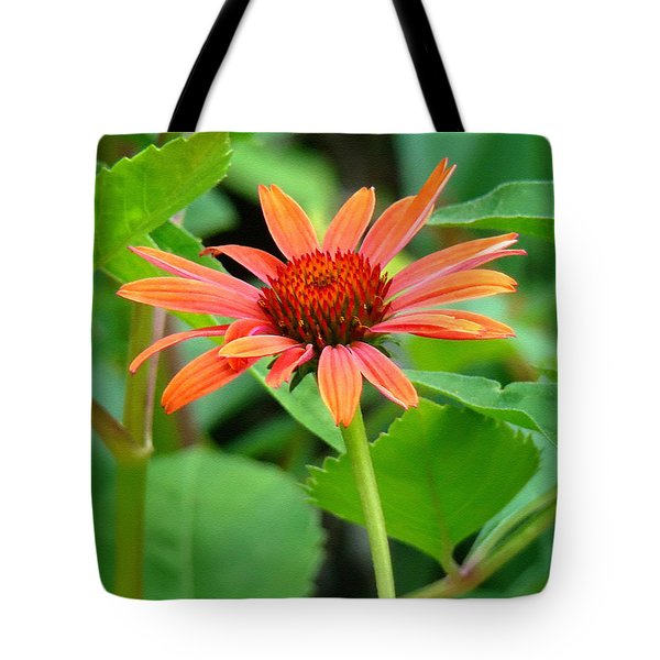 Orange Coneflower Tote Bag