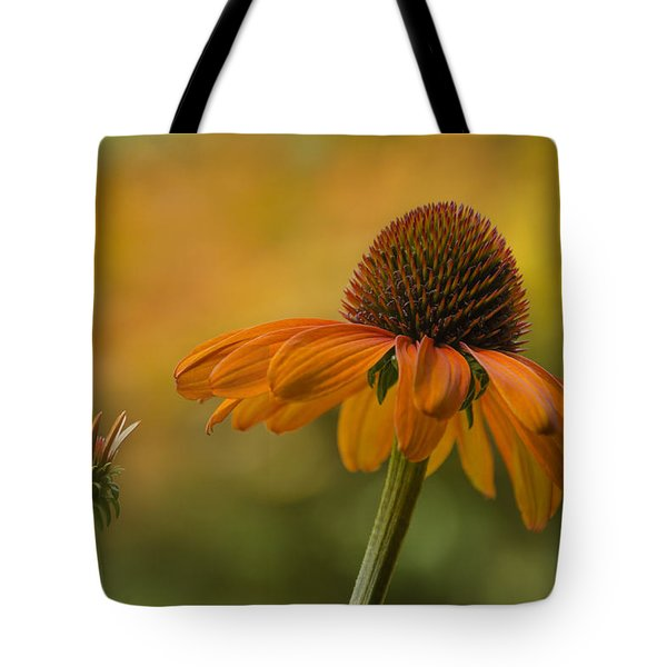 Orange Crush Tote Bag by Ann Bridges
