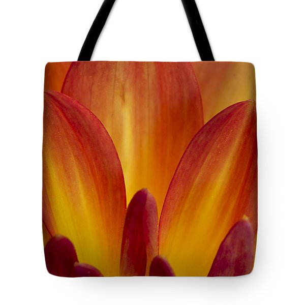 Orange Dahlia Petals Tote Bag