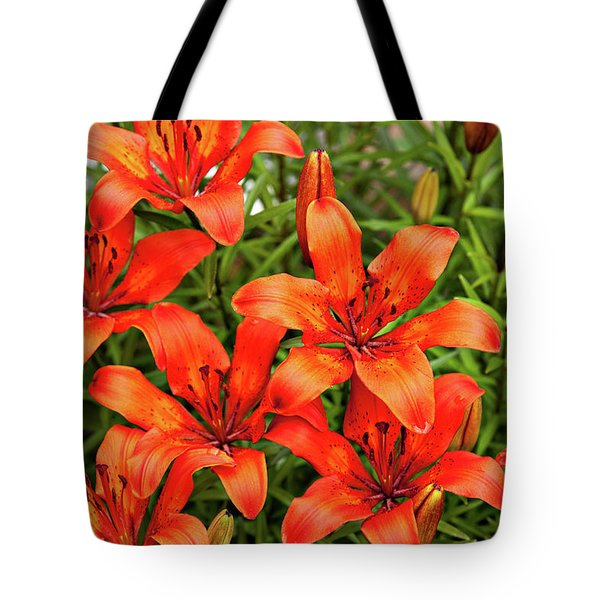 Tote Bag featuring the photograph Orange Day Lillies by Mary Jo Allen