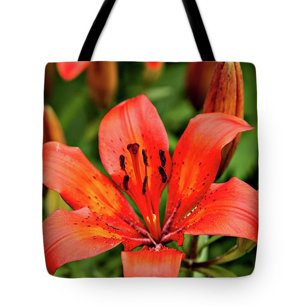 Tote Bag featuring the photograph Orange Day Lilly Single by Mary Jo Allen