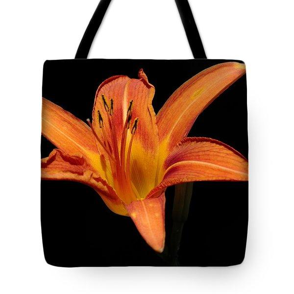 Orange Day-lily Tote Bag