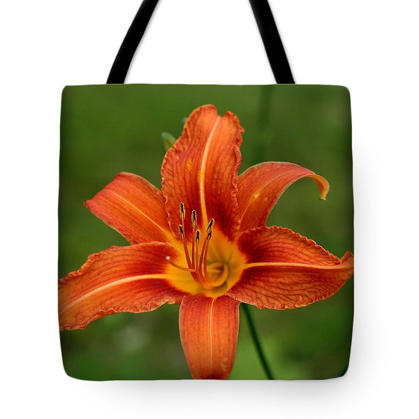 Orange Day Lily No.2 Tote Bag
