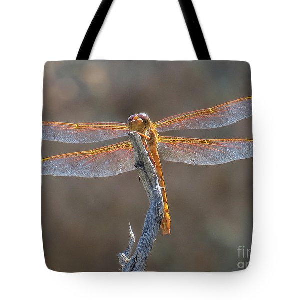Dragonfly 3 Tote Bag