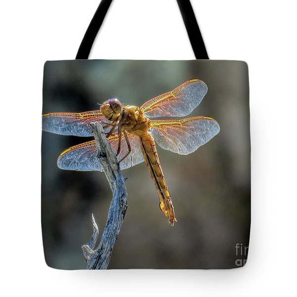 Dragonfly 6 Tote Bag