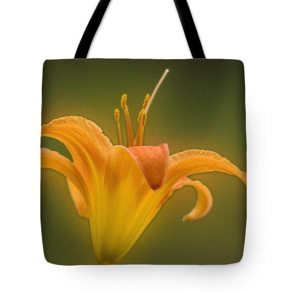 Orange Flower Head  Tote Bag