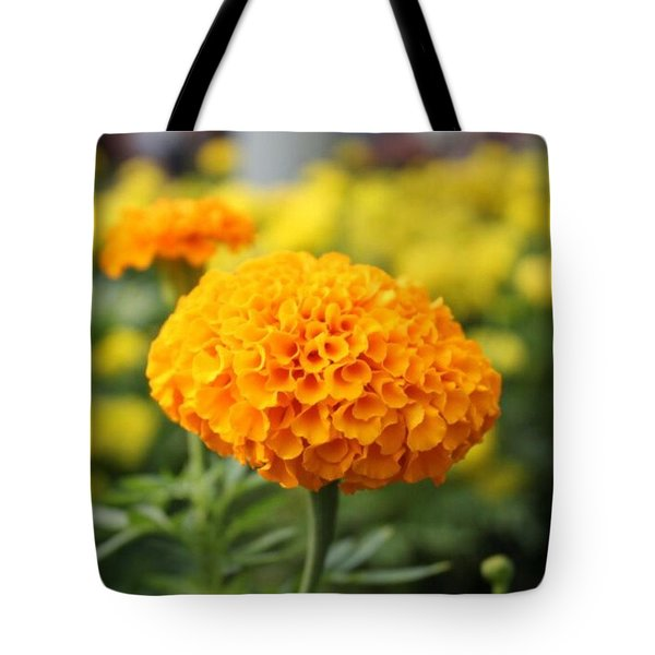 #orange #flower Surrounded By Tote Bag