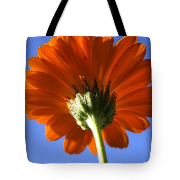 Orange Gerbera Flower Tote Bag by Ralph A  Ledergerber-Photography