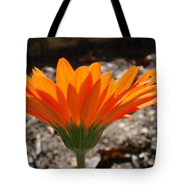 Orange Glory Tote Bag