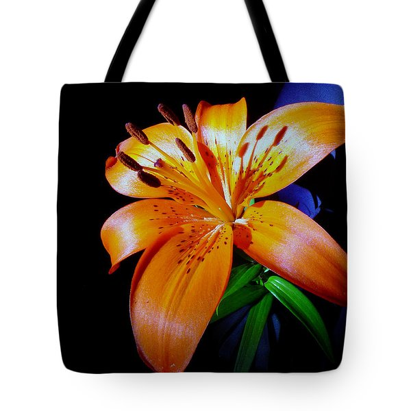 orange Glow Tote Bag