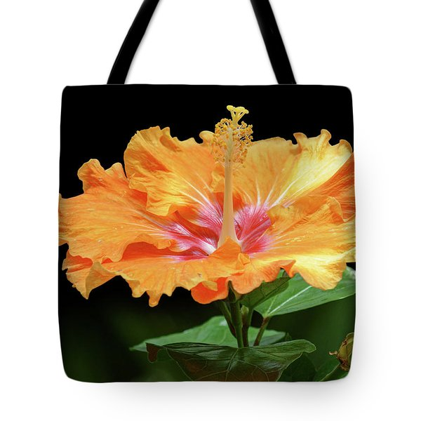 Orange Hibiscus - Flower Tote Bag