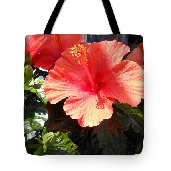 Orange Hibiscus Tote Bag by Kay Gilley