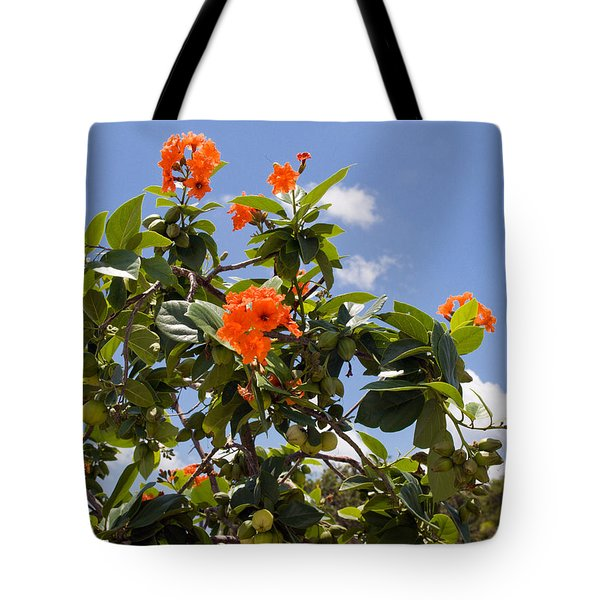 Orange Hibiscus With Fruit On The Indian River In Florida Tote Bag by Allan  Hughes