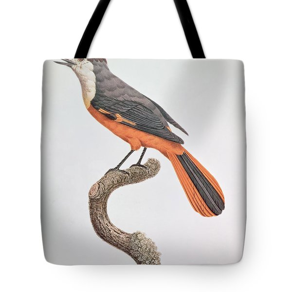Orange Jay Tote Bag by Jacques Barraband