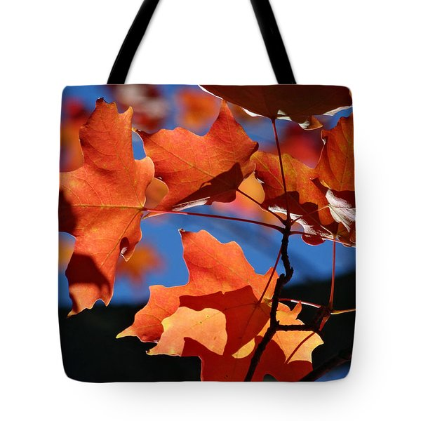 Orange Leaves Tote Bag by Mikki Cucuzzo