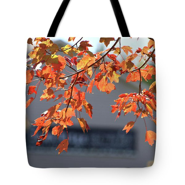 Orange Leaves Of Autumn Tote Bag by Michele Wilson