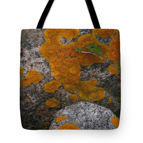 Tote Bag featuring the photograph Orange Lichen On Granite by Mary Bedy