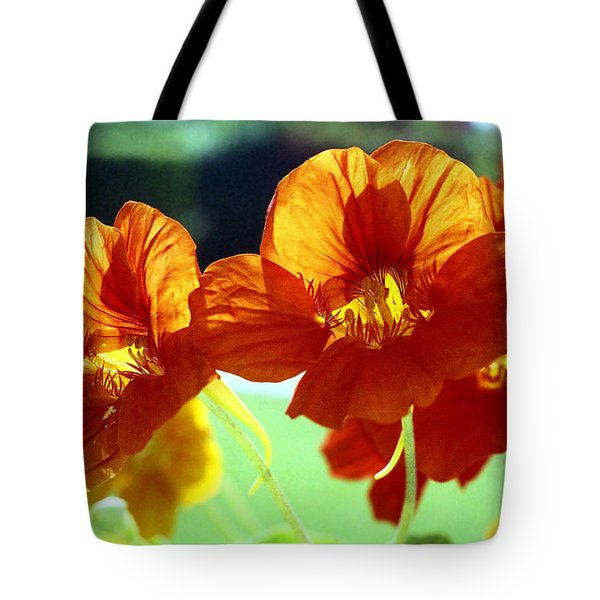Orange Nasturtiums Tote Bag