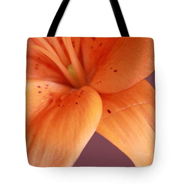 Tote Bag featuring the photograph Orange Orchid by Karen Nicholson