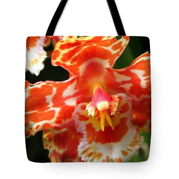Orange Orchid Tote Bag