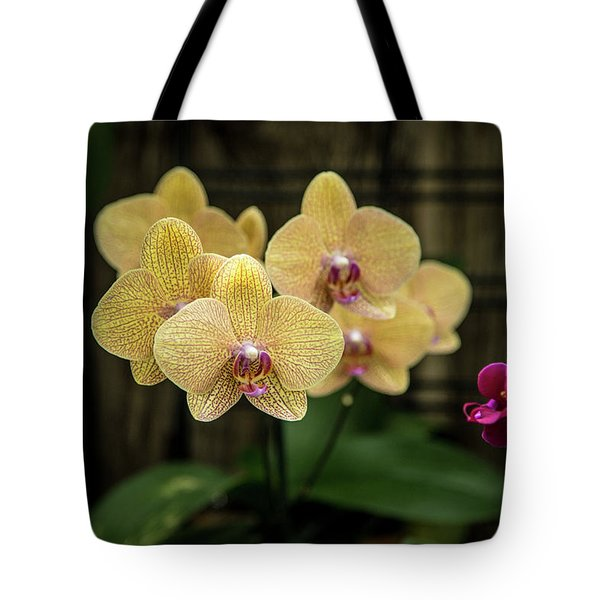 Orange Orchids Tote Bag
