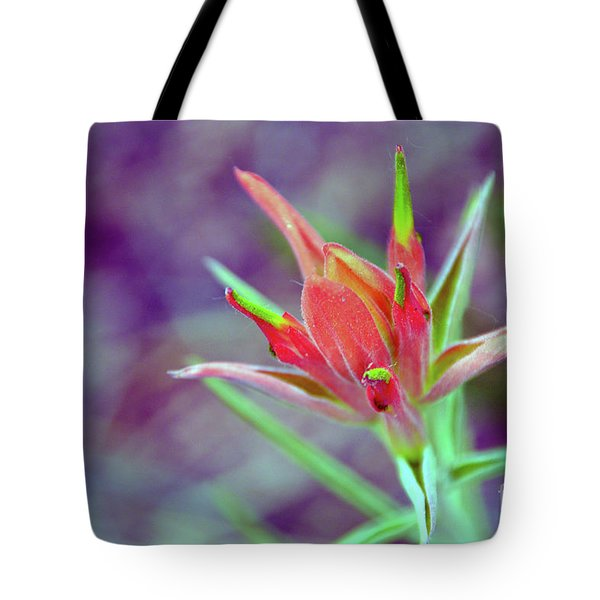 Orange Paintbrush Flower Tote Bag