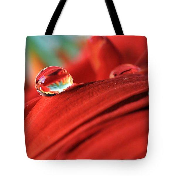 Orange Petals And Water Drops Tote Bag