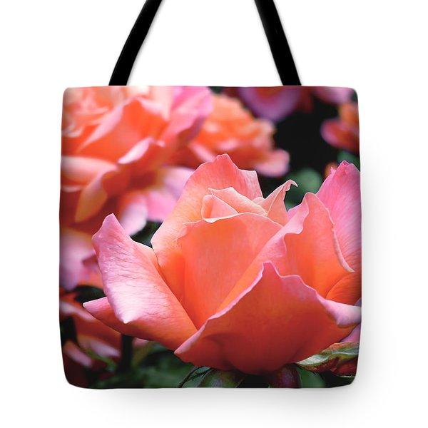 Orange-pink Roses  Tote Bag by Rona Black
